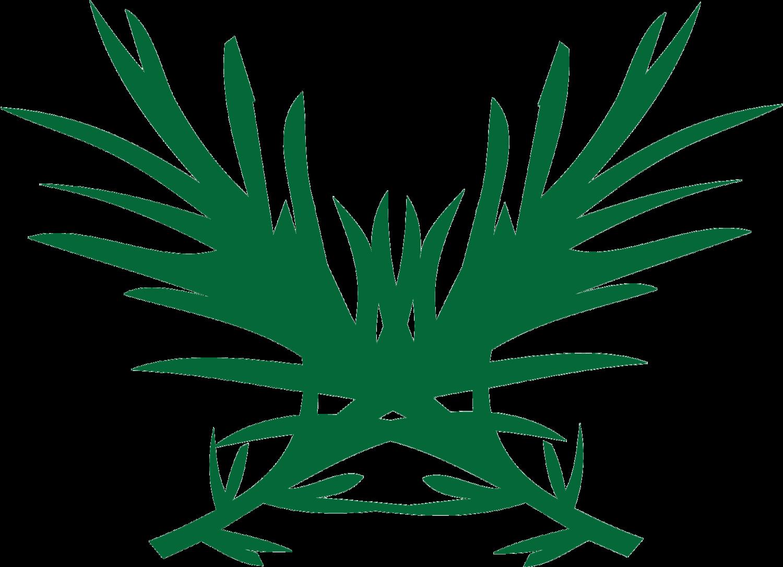 RGNA Logo